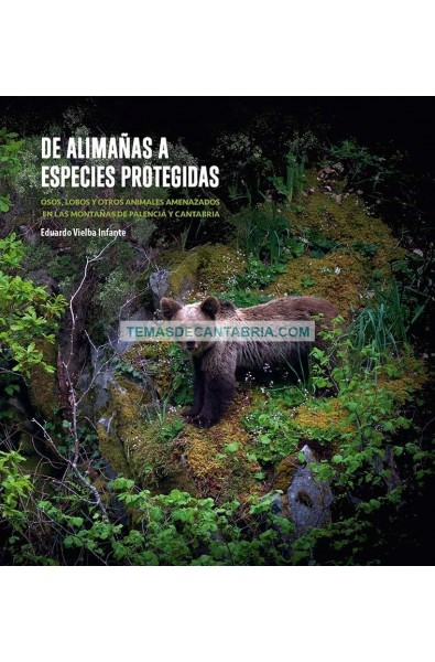 DE ALIMAÑAS A ESPECIES PROTEGIDAS. OSOS, LOBOS Y OTROS ANIMALES AMENAZADOS DE LAS MONTAÑAS DE PALENCIA Y CANTABRIA